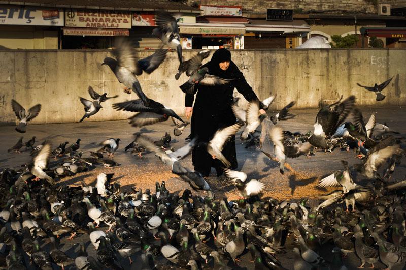 piccioni a Eminonu - foto di Daniela Damonte