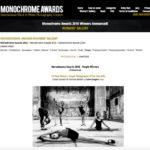 Bugani Winner Monochrom Award 16